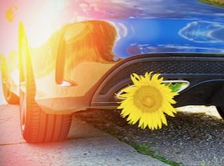 SCHUHMANN & PARTNER Personalberatung Auto Sonnenblume quadratisch klein
